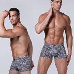 GLACE SOIE Sexy Taille Basse Boxer pour Homme Lisse Mince Respirant Basique de la marque WANYING image 3 produit