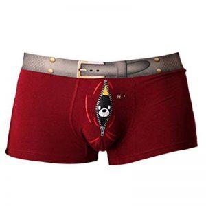 Vividda Homme Slip Boxer Culotte Sous-vêtement Stretch Élastique Oiseau imprimé Respirant Coton Funny de la marque Vividda image 0 produit